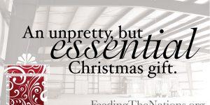 An Unpretty, but Essential Christmas Gift